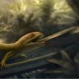 Płaz-kameleon odkryty w kredowym bursztynie z Birmy