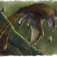 """Skansoriopterygidy były """"ślepą uliczką"""" w ewolucji lotu u dinozaurów"""