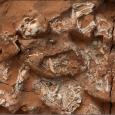 Nowe badania pokazują, że wczesne zauropodomorfy i ceratopsy skłądały jaja o miękkiej skorupce